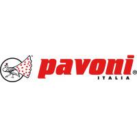 Мотор (160101G37) для Инжектора для крема (дозатор) Le Pavoni